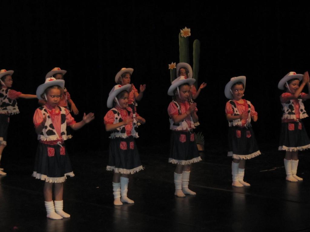 gala-de-danse2015 025