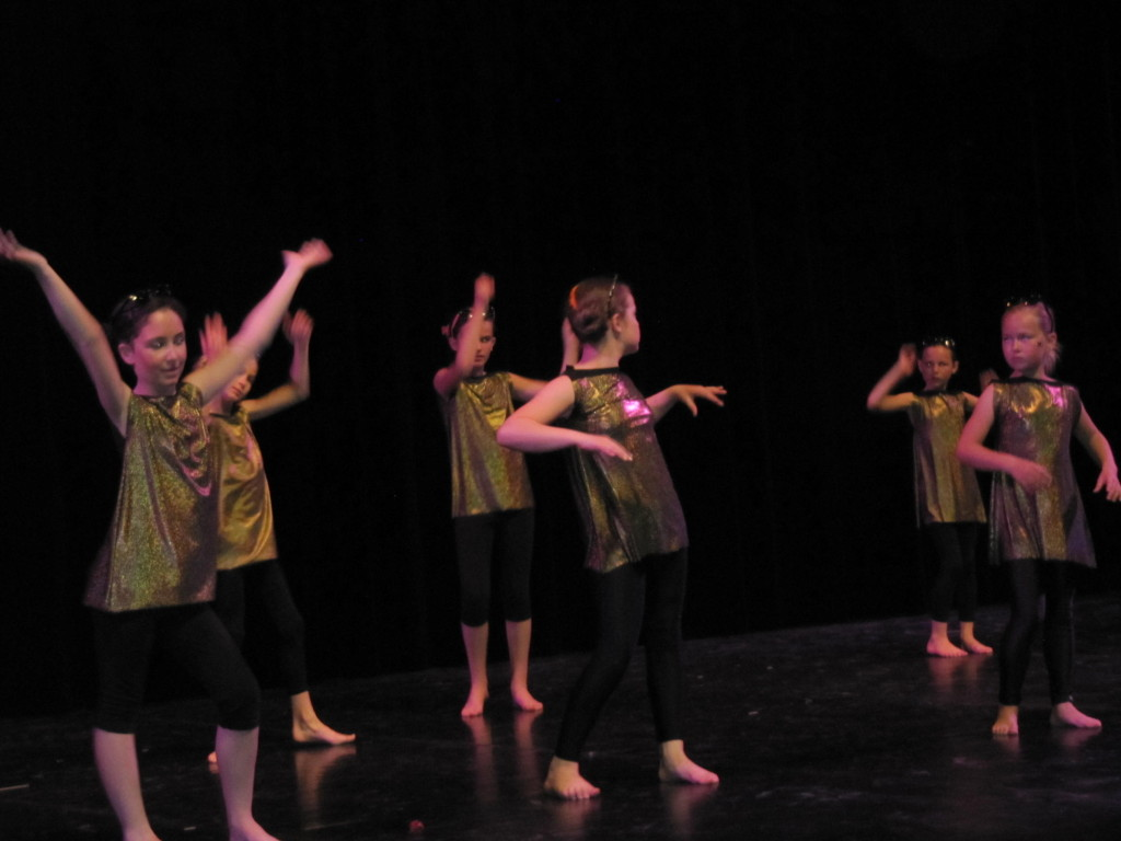 gala-de-danse2015 031