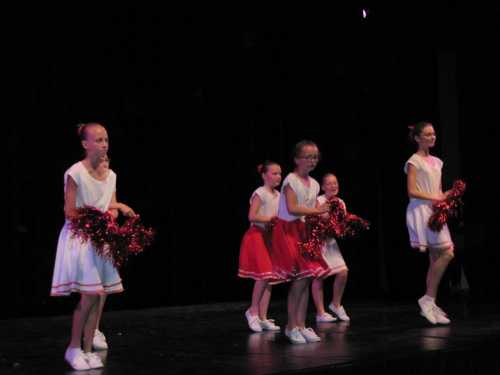 gala-de-danse2015 035