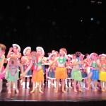 gala-de-danse2015 049